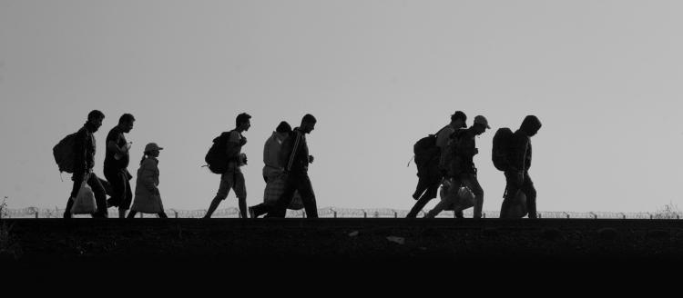 Refugees and migrants cross the border between Serbia and Hungary. © Hollandse Hoogte/Warren Richardson/UNHCR Photo.